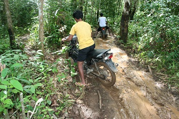 The trails through the jungles are often very muddy (swampy).
